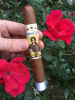 "Regina Cigars Honduran Collection - ""Gabriel"" Rosado Wrapper"